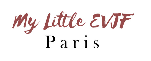logo evjf paris