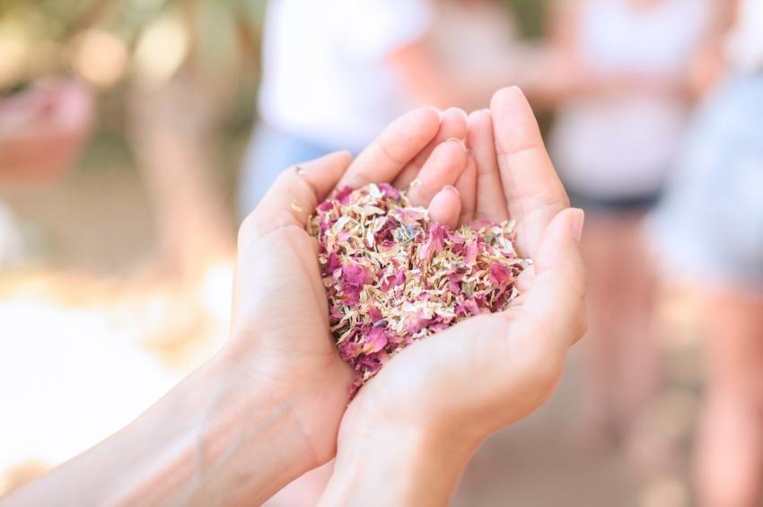 petales de fleurs sechees confettis