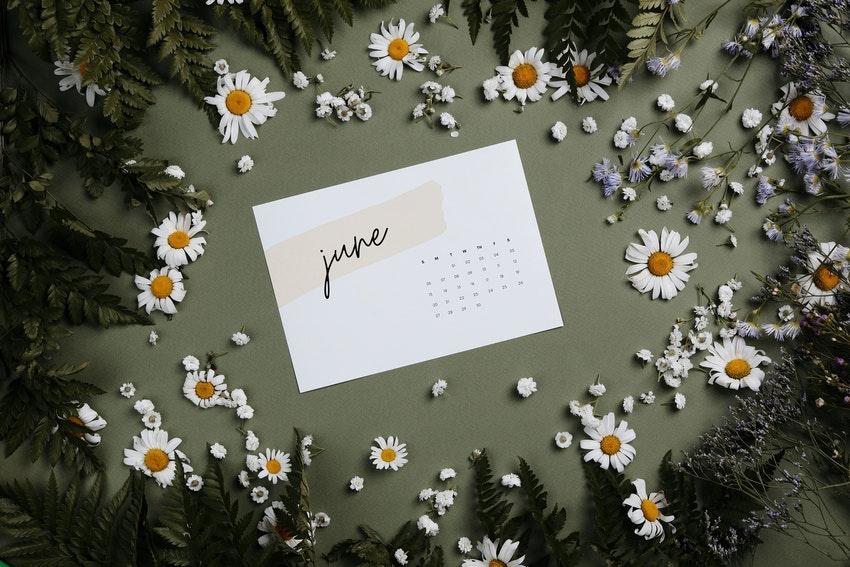 petite carte avec le calendrier du mois de juin entouree de petites marguerites